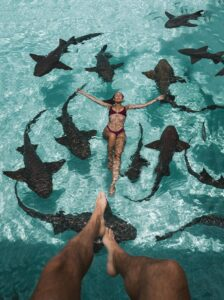 woman floating on back surrounded by sharks